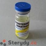 Testosteron Enantat