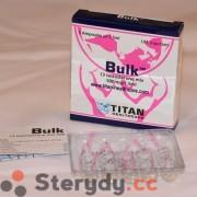 Bulk (Mix 13 testosteronów 500mg)