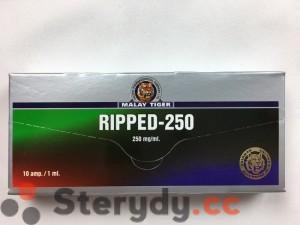 przód pudełka RIPPED-250