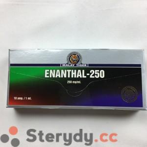 przód pudełka ENANTHAL-250